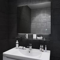 Зеркало для ванной комнаты Sanwerk ГЛОВЕ ЭСКАДА 100*65 ZG0000104