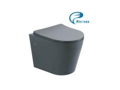 Унитаз подвесной Rimless с сиденьем серый матовый 97802806 Axiom ASIGNATURA
