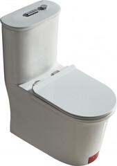 Унитаз-компакт с функцией пенообразования ASIGNATURA Advance 95822505 с сиденьем Soft Close дюропласт